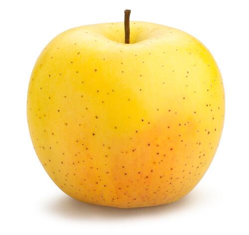 名 りんご ぐんま 月 ぐんま名月りんご取寄販売 隠れた銘品種りんごを通販で。約5kg