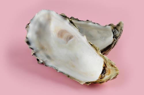 牡蠣の旬~牡蠣は英語で「R」の...