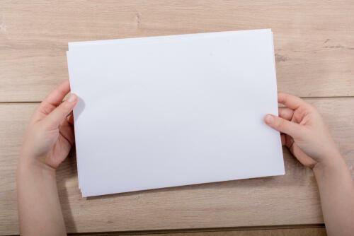 用紙 サイズ 比較