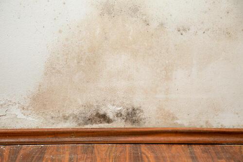 落とし 壁 汚れ