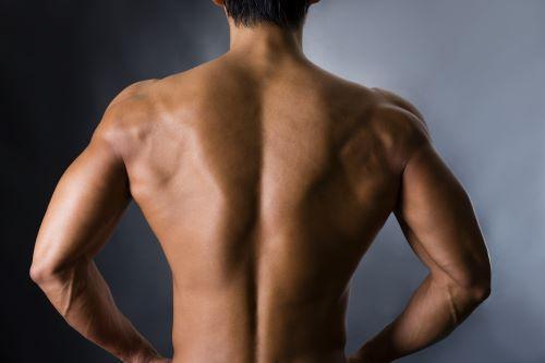 名前 背中 筋肉 背中のこりを治すには?原因と自分でできる対処法|筋肉|趣味時間